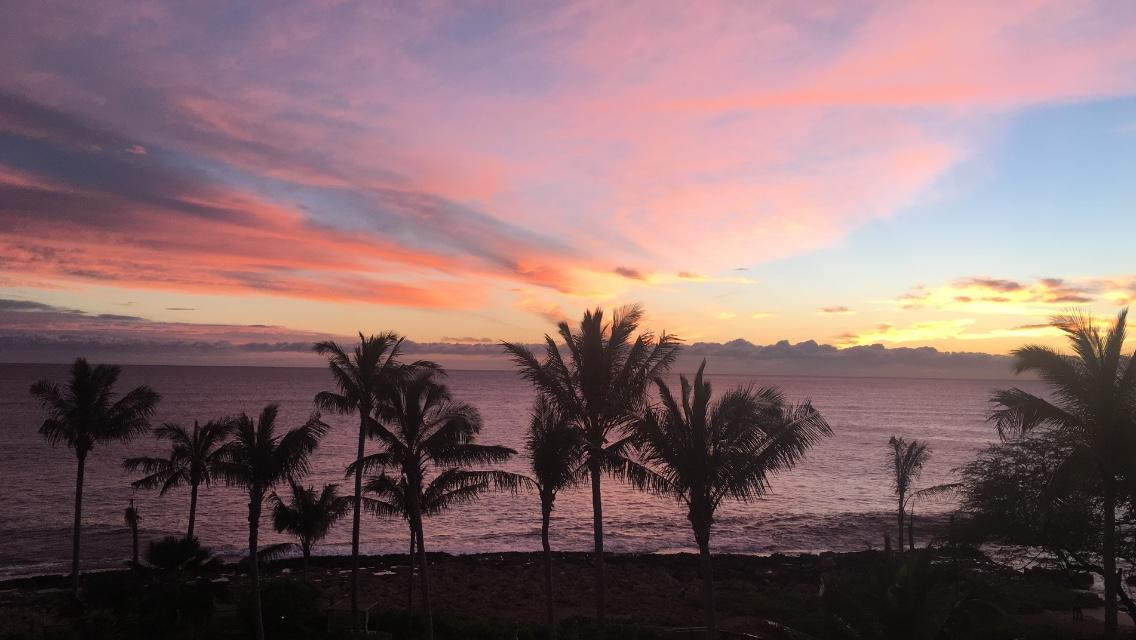 四季; ポリネシア; 星; ハワイ; 経路探索